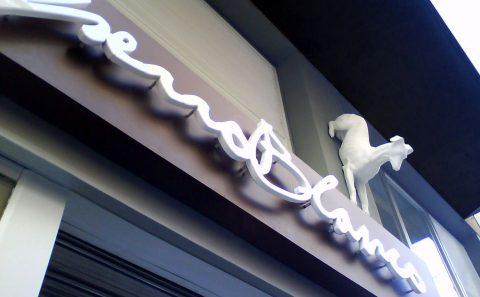 Perro Blanco Rotulación Artística